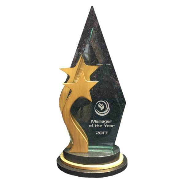 Medalcraft Mint Crystal Award for Manager of the Year